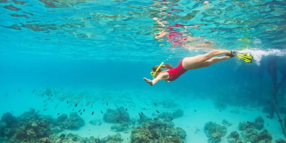 Snorkeling Tour From Marsa Alam to Hamata Island - Tours From Hurghada