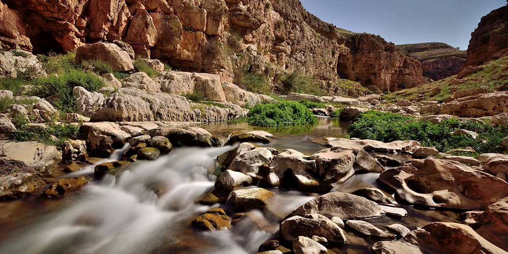 Wadi El Gemal Marsa Alam Day Trips - Tours From Hurghada