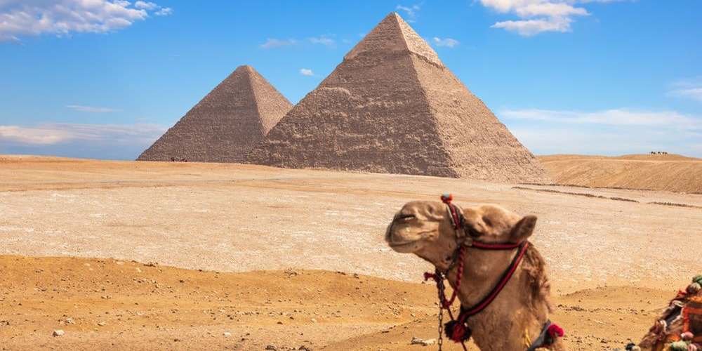 Egypt Pyramids - Cairo Day Tour from Soma Bay - Tours From Hurghada