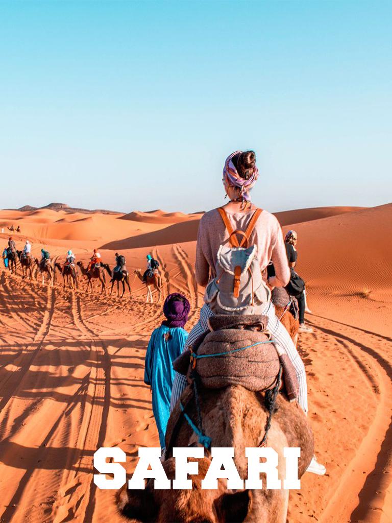 Makadi Bay Safari Trips - Makadi Bay Excursions - Tours From Hurghada