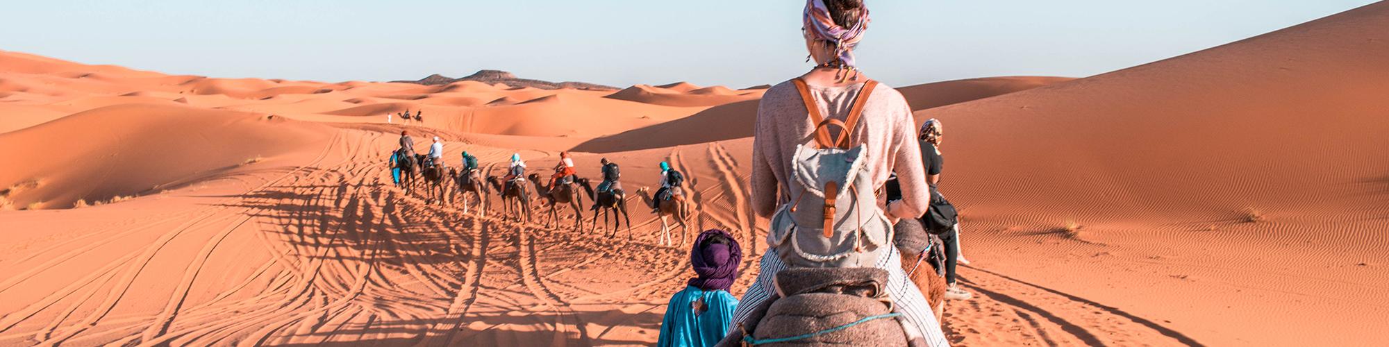 Makadi Bay Safari Trips - Safari Tours in Makadi Bay - Tours From Hurghada
