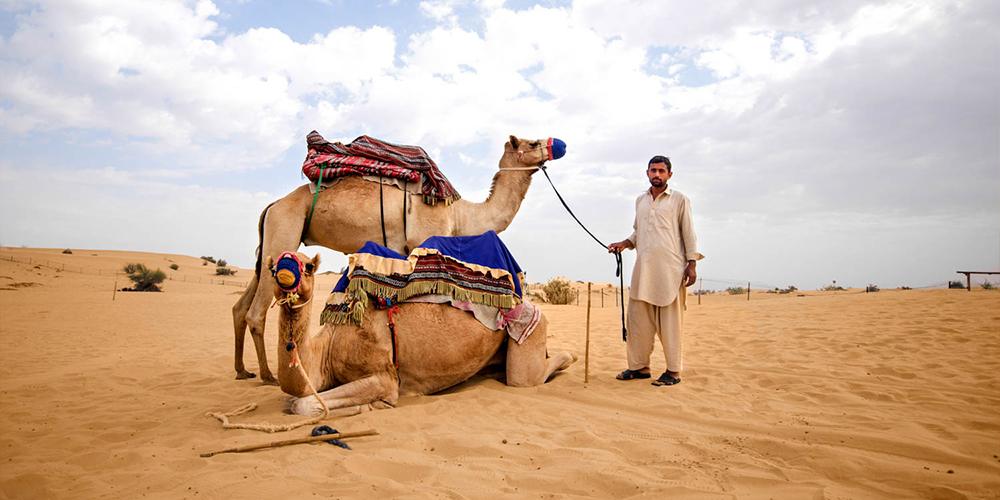 Makadi Bay Sunset Desert Safari Trip By Quad Bike - Makadi Bay Day Tours - Tours From Hurghada