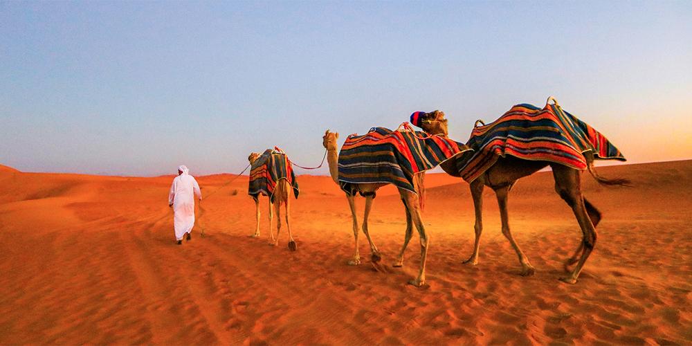Makadi Bay Sunset Desert Safari Trip By Quad Bike - Makadi Bay Safari Trips - Tours From Hurghada
