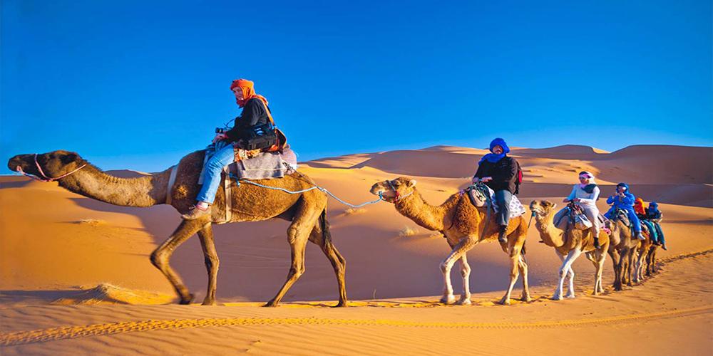 Makadi Bay Morning Desert Safari Trip By Quad Bike - Safari Trip From Makadi- Tours From Hurghada