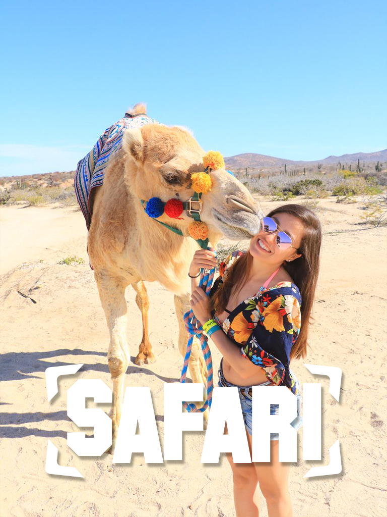 Marsa Alam Safari Trips - Marsa Alam Excursions - Tours From Hurghada