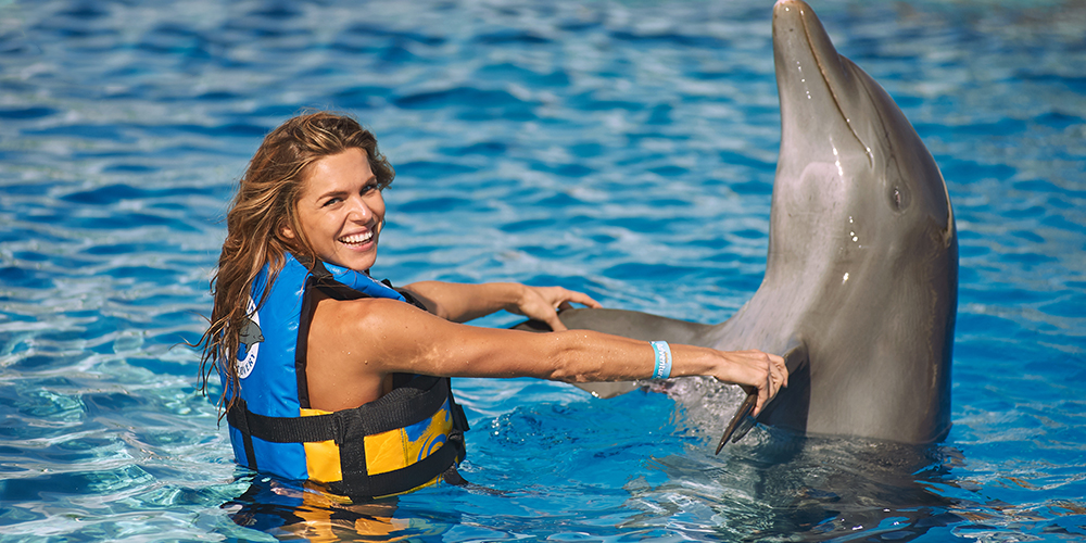 Swimming with Dolphins in El Gouna - El Gouna Day Trip - Tours From Hurghada