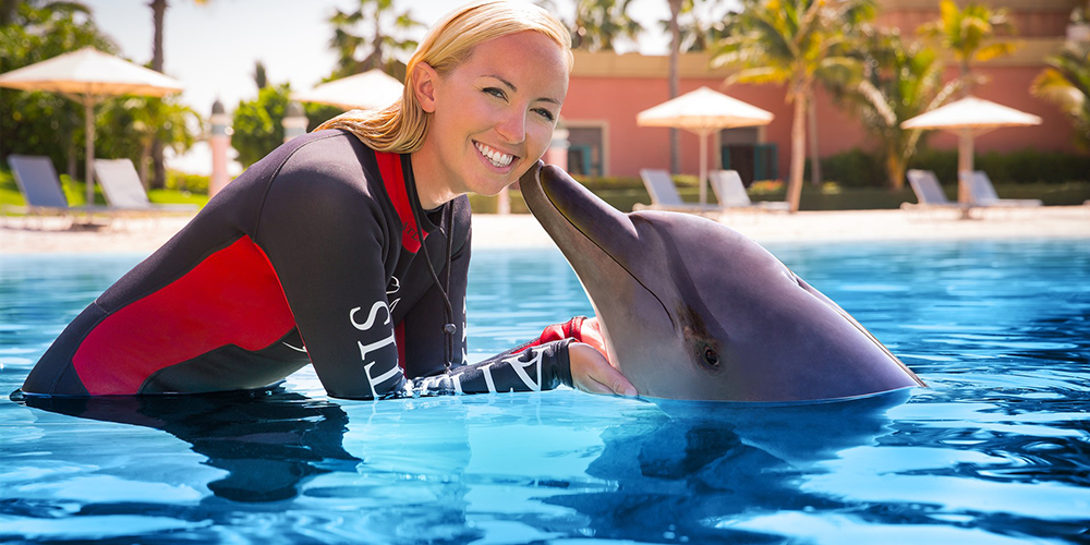 Swimming with Dolphins in El Gouna - El Gouna Trip - Tours From Hurghada
