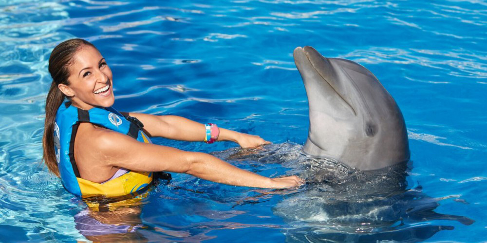 Swimming with Dolphins in El Gouna - Swim with Dolphins - Tours From Hurghada