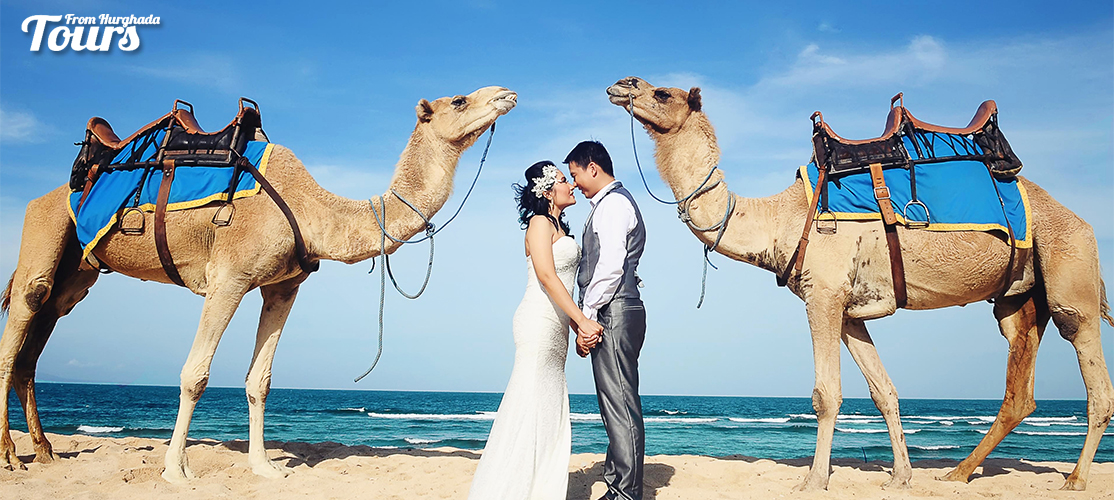 Camel Riding Port Ghalib Day Tour - Port Ghalib Excursions - Tours From Hurghada