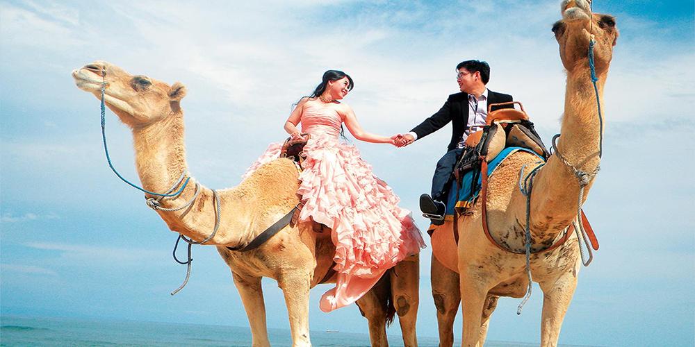 Camel Riding Port Ghalib Day Tour - Port Ghalib Tours - Tours From Hurghada