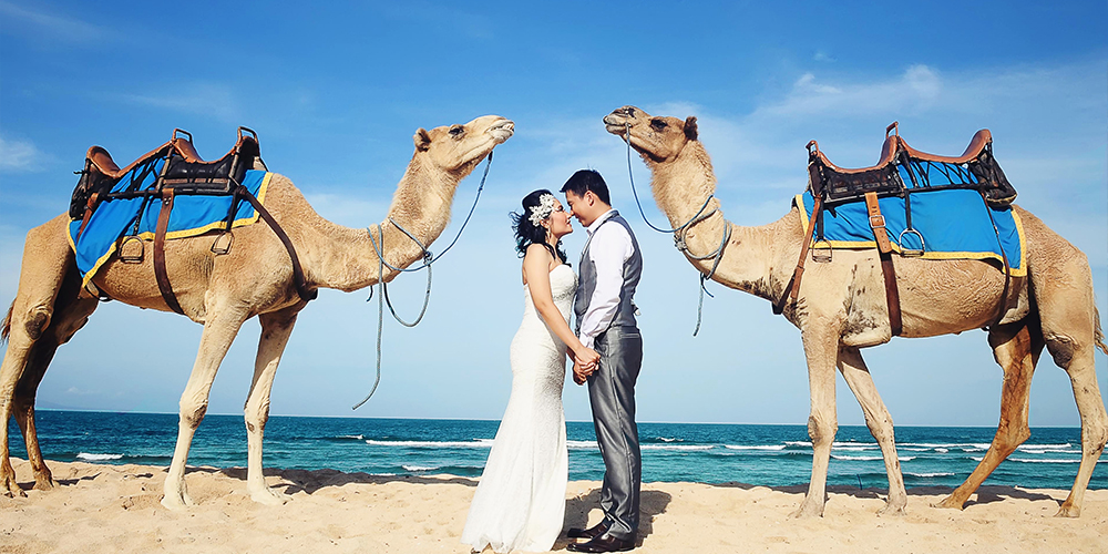 Camel Riding Port Ghalib Day Tour - Port Ghalib Trips - Tours From Hurghada
