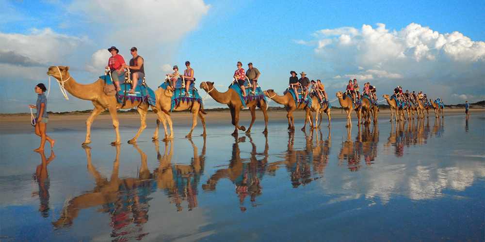 Camel Riding Port Ghalib - Port Ghalib Excursions - Tours From Hurghada