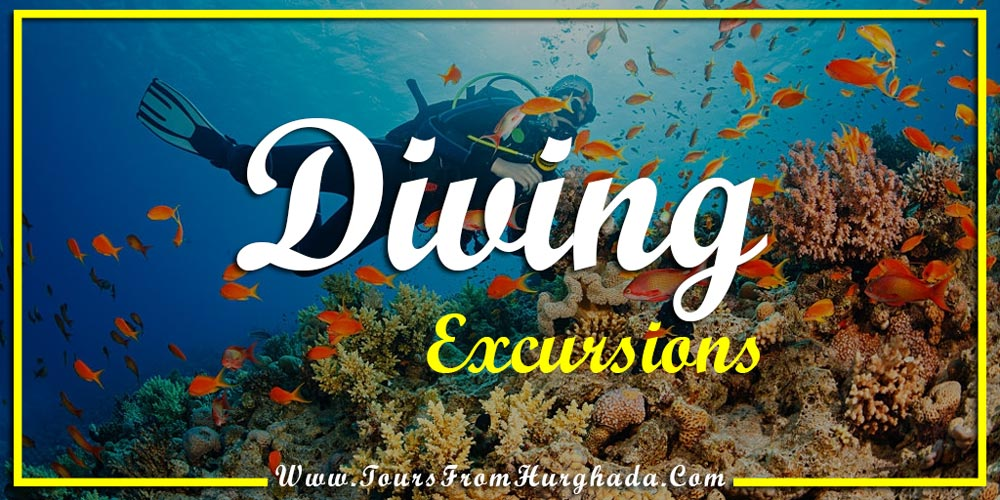 Diving Excursions - Things to Do in Port Ghalib - Tours from Hurghada