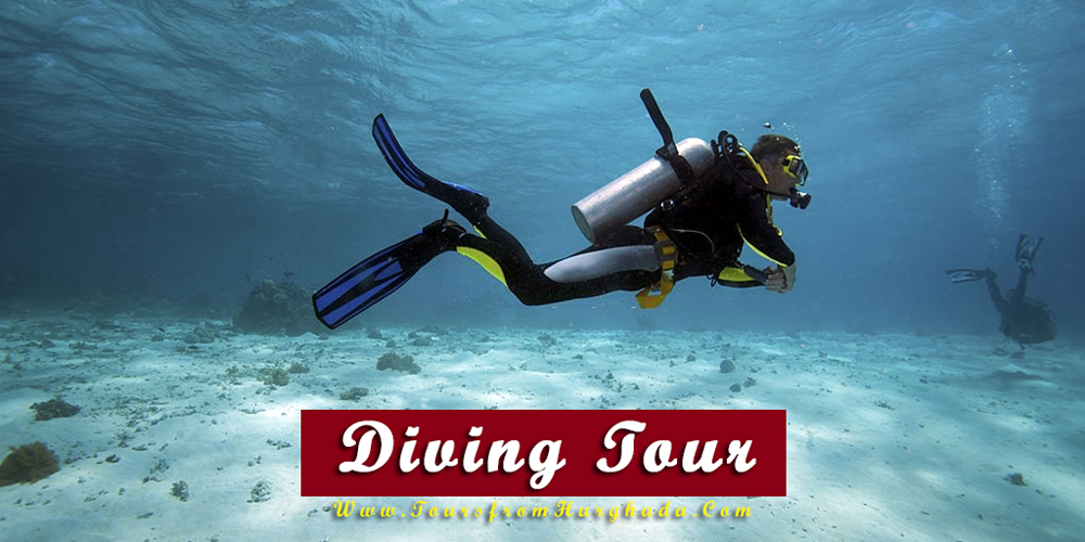 Diving Tour - Things to Do in Makadi Bay - Tours from Hurghada