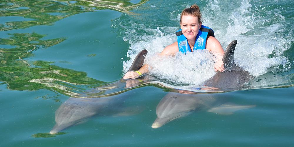 Overnight Snorkeling Trip At Sataya Dolphin Reef From Port Ghalib - Port Ghalib Tours - Tours From Hurghada