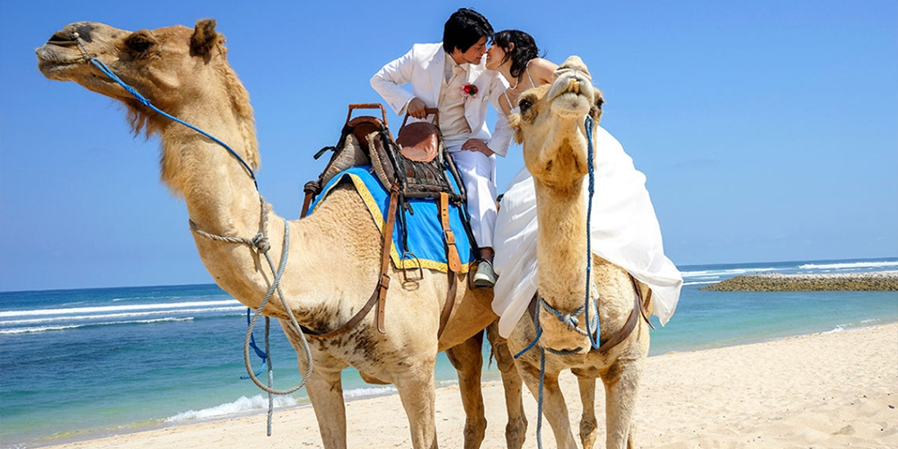 Port Ghalib Camel Riding Day Tour - Port Ghalib Excursions - Tours From Hurghada