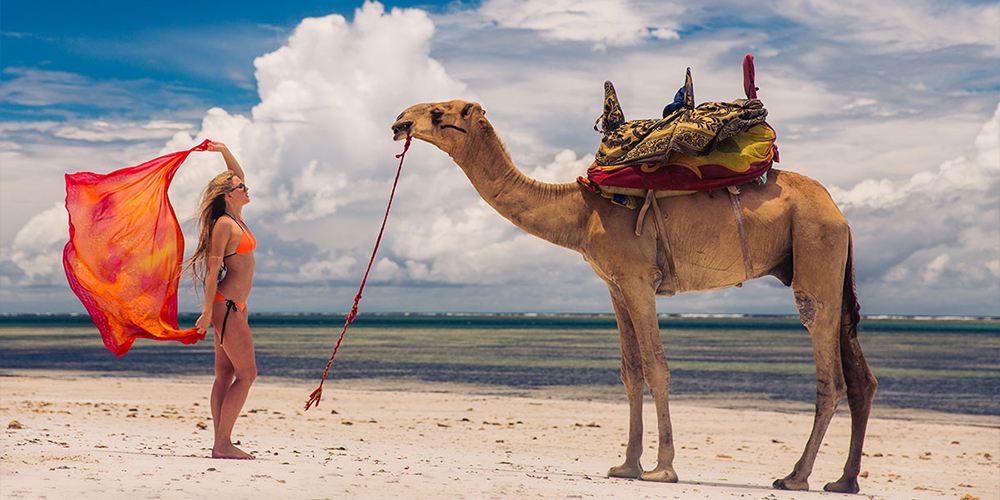 Port Ghalib Camel Riding Day Tour - Port Ghalib Tours- Tours From Hurghada
