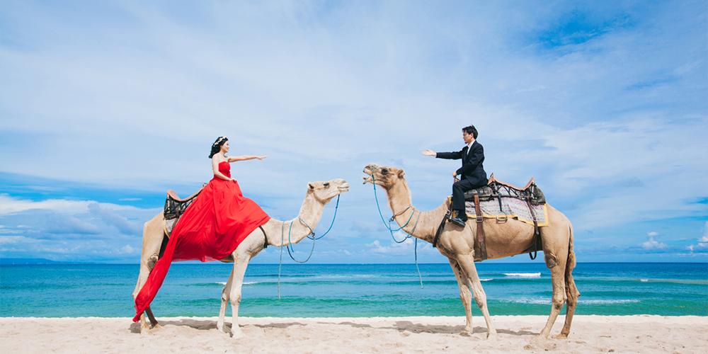Port Ghalib Camel Riding - Port Ghalib Excursions - Tours From Hurghada