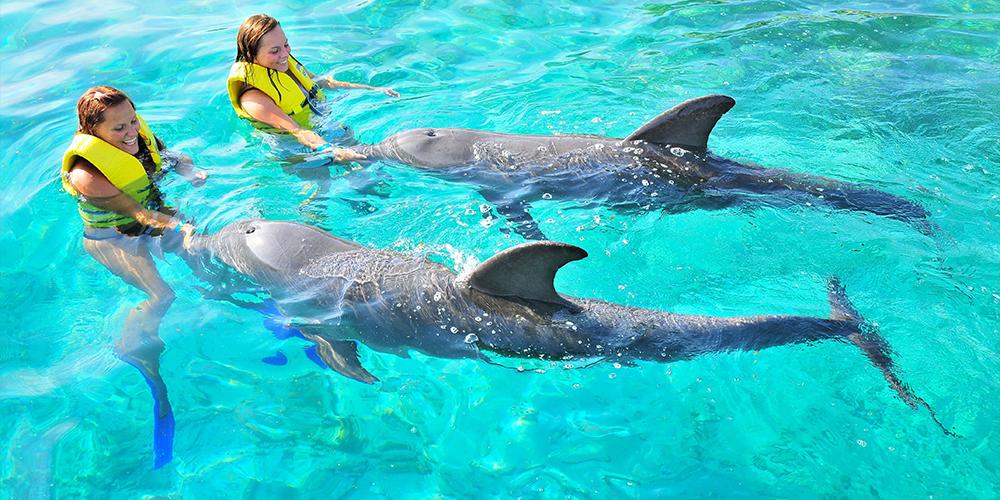 Port Ghalib Overnight Snorkeling Trip to Sataya Dolphin Reef - Tours From Hurghada
