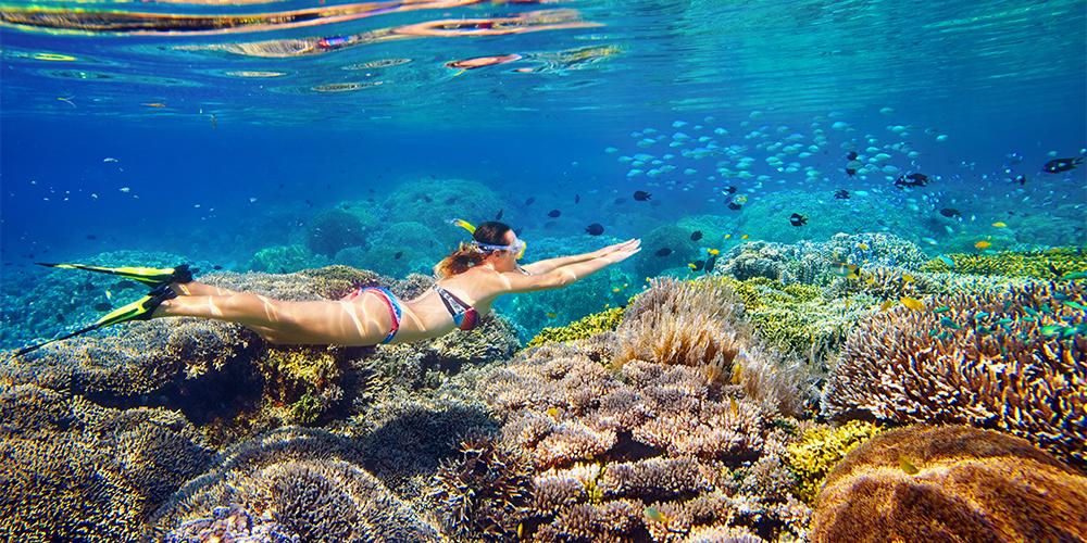 Port Ghalib Overnight Trip At Sataya Dolphin Reef - Tours From Hurghada