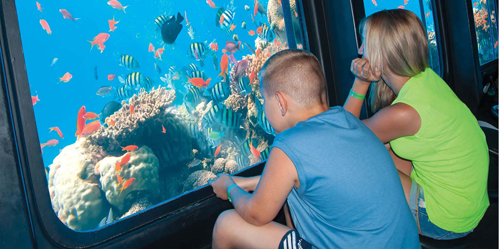 Port Ghalib Semi-Submarine Seascape Excursions - Tours From Hurghada