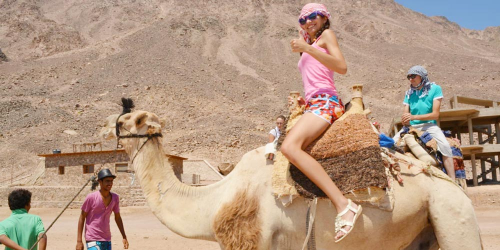 Riding Camels - Things to Do in Soma Bay - Tours from Hurghada