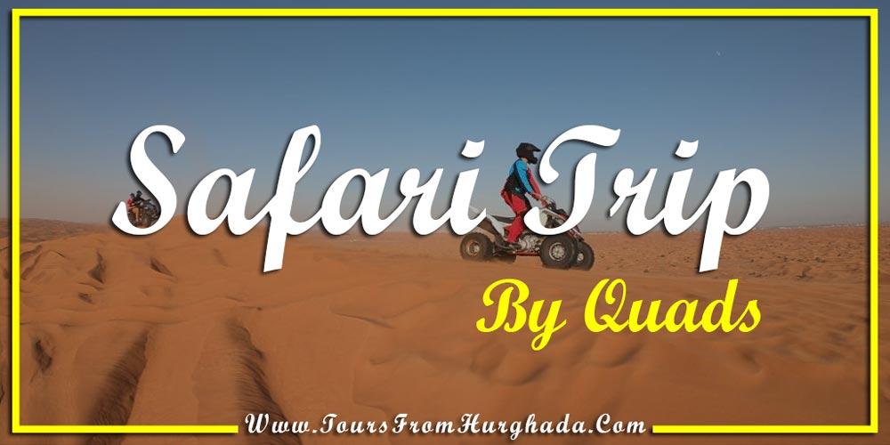 Safari Trip Port Ghalib - Things to Do in Port Ghalib - Tours from Hurghada