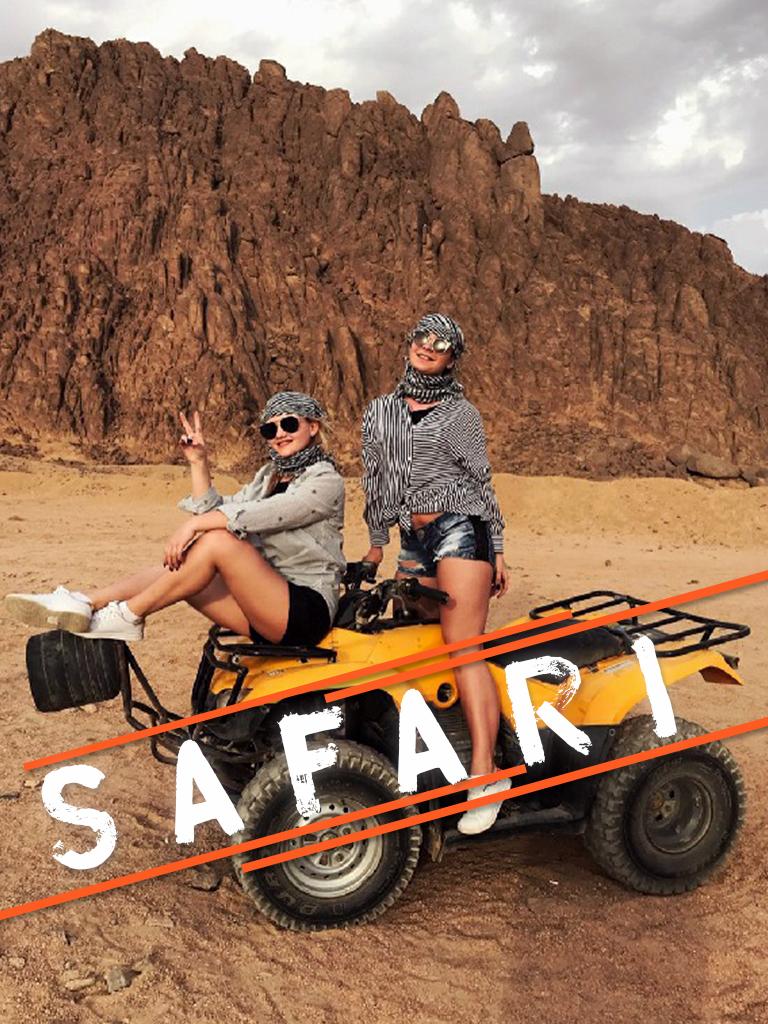 Safari Trips from Port Ghalib - Port Ghalib Excursions - Tours from Hurghada