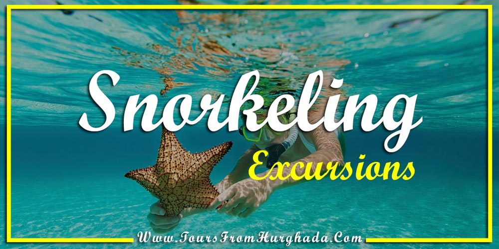 Snorkeling Excursions - Things to Do in Port Ghalib - Tours from Hurghada