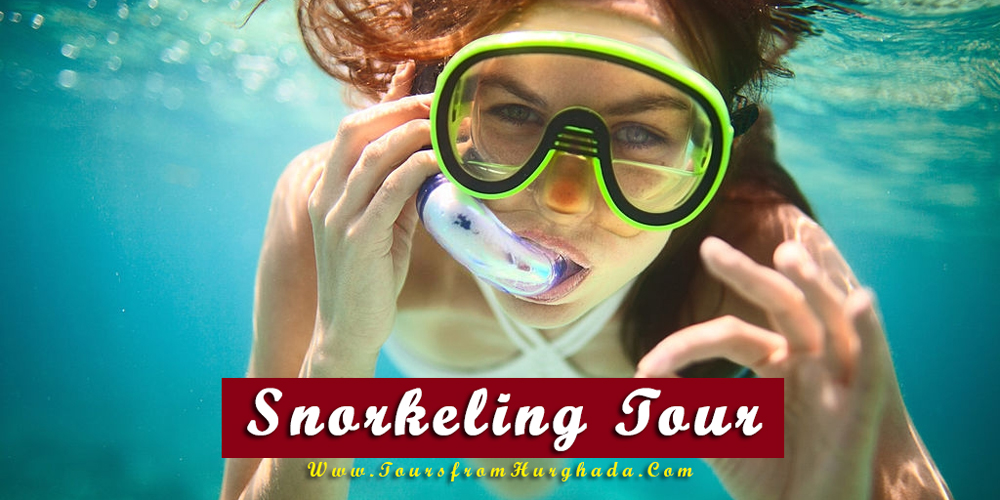 Snorkeling Tour - Things to Do in Makadi Bay - Tours from Hurghada