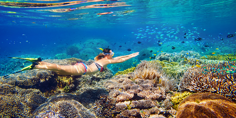 Snorkeling Trip at Hamata Islands - Tours From Hurghada