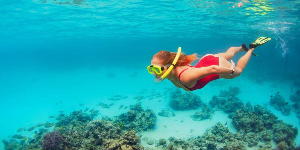 Snorkeling Trip at Port Ghalib Marina from Port Ghalib - Port Ghalib Day Tours - Tours From Hurghada