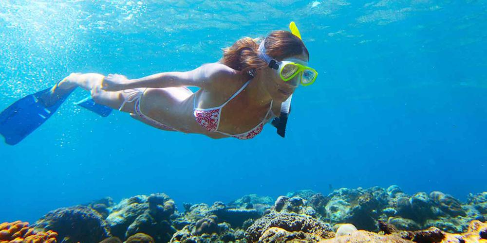 Snorkeling Trip at Port Ghalib Marina from Port Ghalib - Port Ghalib Excursions - Tours From Hurghada
