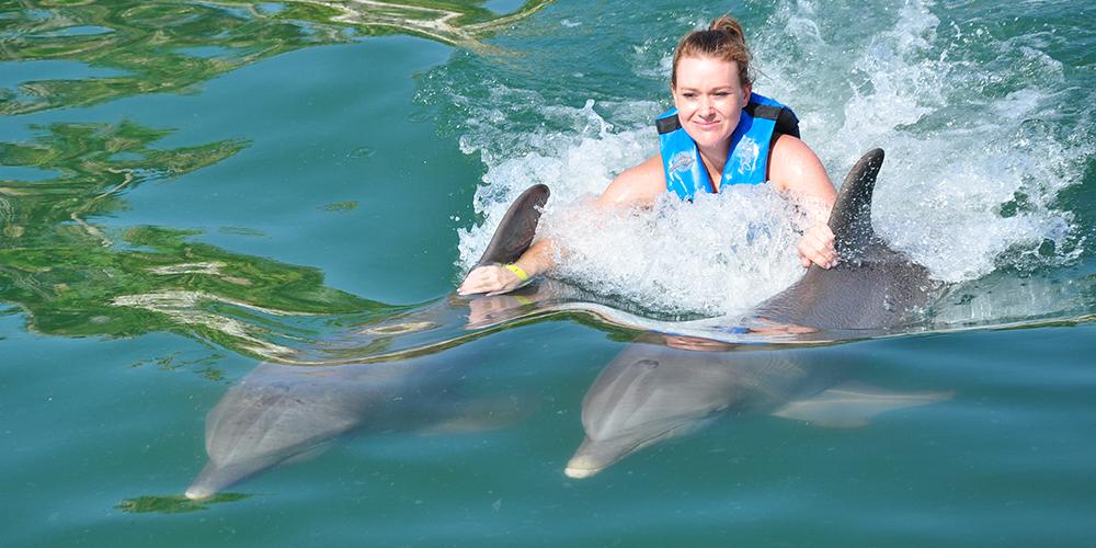 Snorkeling Trip at Sataya Dolphin Reef From Port Ghalib - Excursions from Port Ghalib - Tours From Hurghada