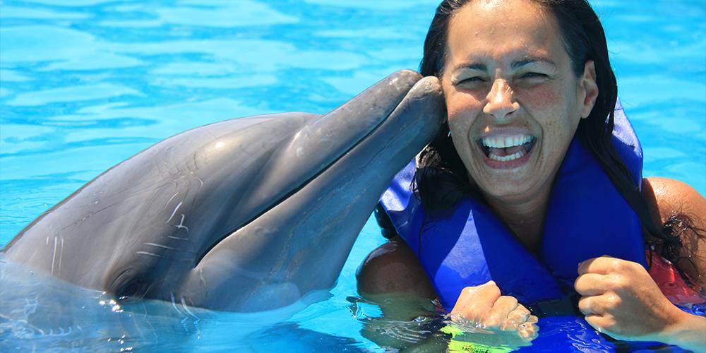 Snorkeling Trip at Sataya Dolphin Reef From Port Ghalib - Port Ghalib Tour - Tours From Hurghada
