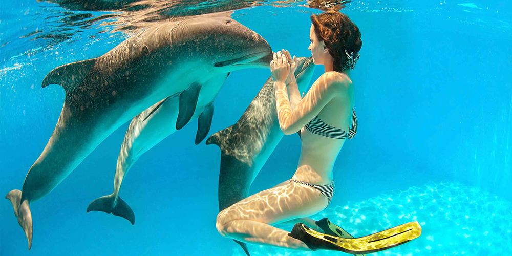 Snorkeling Trip at Sataya Dolphin Reef From Port Ghalib - Port Ghalib Trips - Tours From Hurghada
