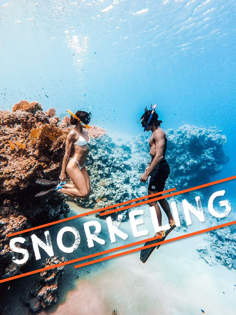 Snorkeling Trips from Port Ghalib - Port Ghalib Excursions - Tours from Hurghada