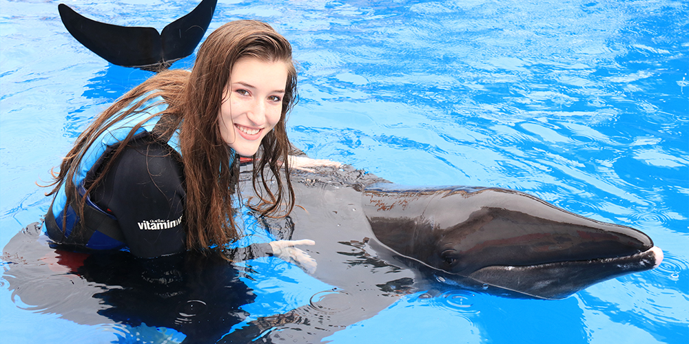 Swim with Dolphins in Marsa Alam - Marsa Alam Excursions - Tours From Hurghada