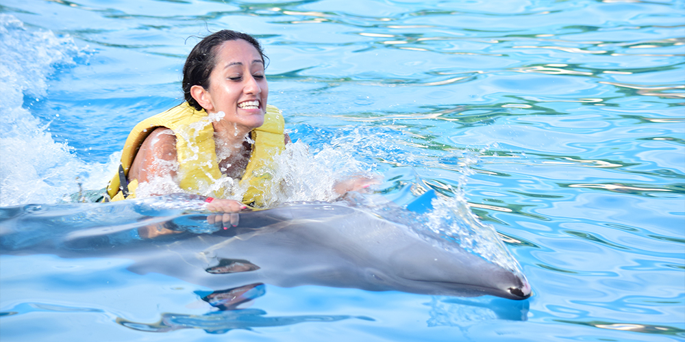 Swimming with Dolphins in Marsa Alam - Marsa Alam Day Tour - Tours From Hurghada