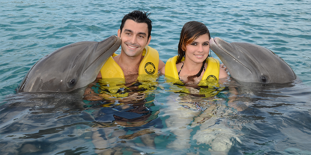 Swimming with Dolphins in Marsa Alam - Marsa Alam Day Tours - Tours From Hurghada