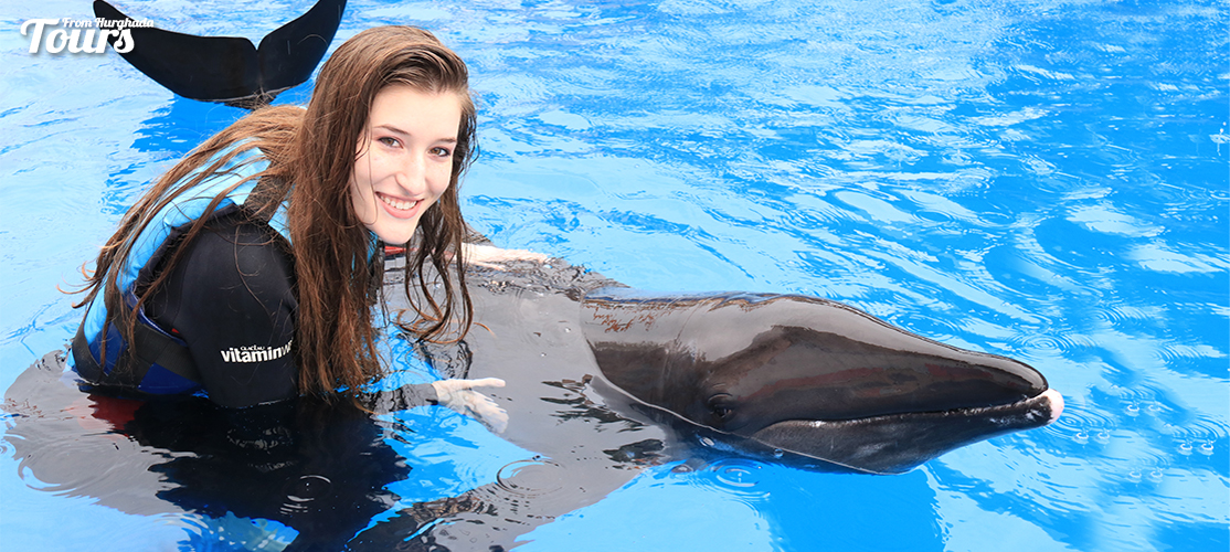 Swimming with Dolphins in Marsa Alam - Marsa Alam Excursions - Tours From Hurghada