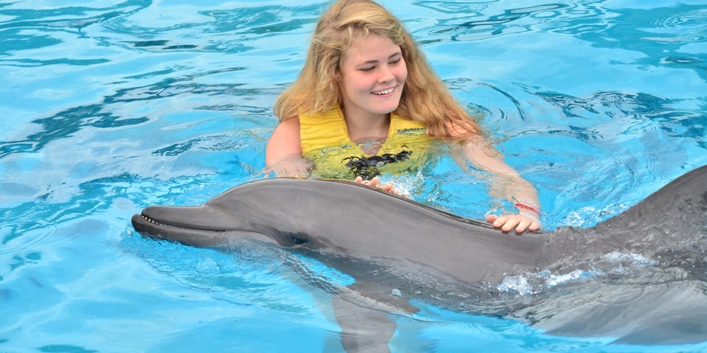 Swimming with Dolphins in Marsa Alam - Marsa Alam Tours - Tours From Hurghada