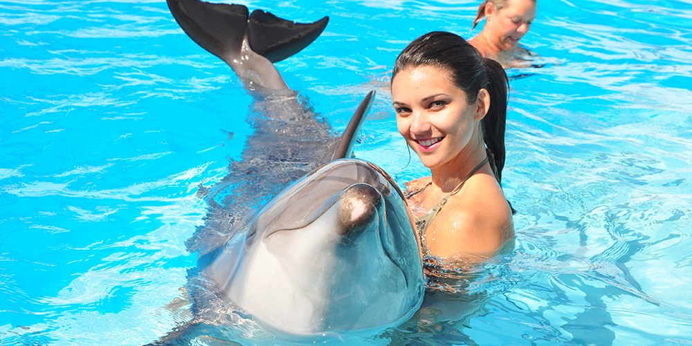 Swimming with Dolphins in Marsa Alam -Swimming with Dolphins in Marsa Alam - Excursions from Marsa Alam - Tours From Hurghada Marsa Alam - Tours From Hurghada
