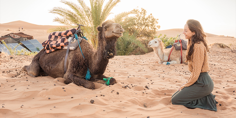 Wadi El Gemal Day Tour From Port Ghalib - Port Ghalib Excursions - Tours From Hurghada