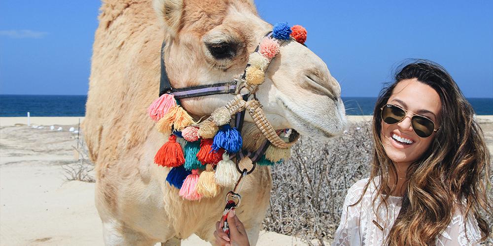 Wadi El Gemal Tour From Port Ghalib - Excursions from Port Ghalib - Tours From Hurghada