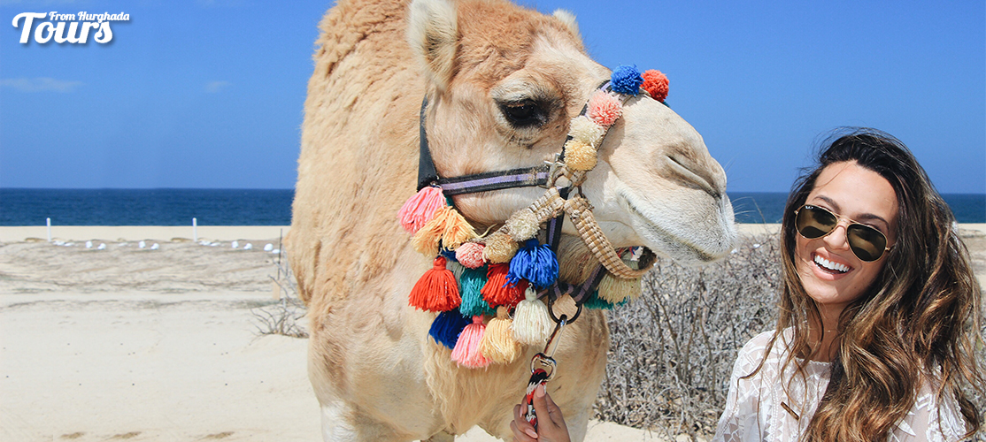 Wadi El Gemal Tour From Port Ghalib - Port Ghalib Excursions - Tours From Hurghada