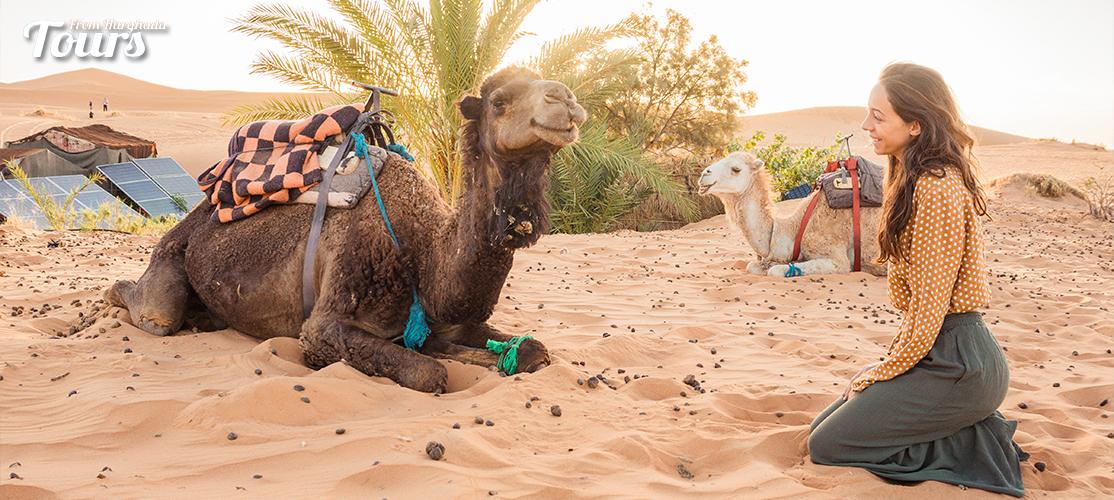 Safari - 9 Days Hurghada, Aswan & Abu Simbel Holiday Package - Tours From Hurghada