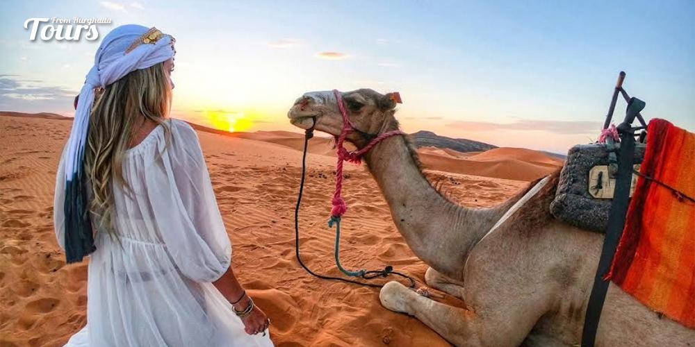 Safari Tour - 8 Days Hurghada and Luxor Holiday - Tours From Hurghada