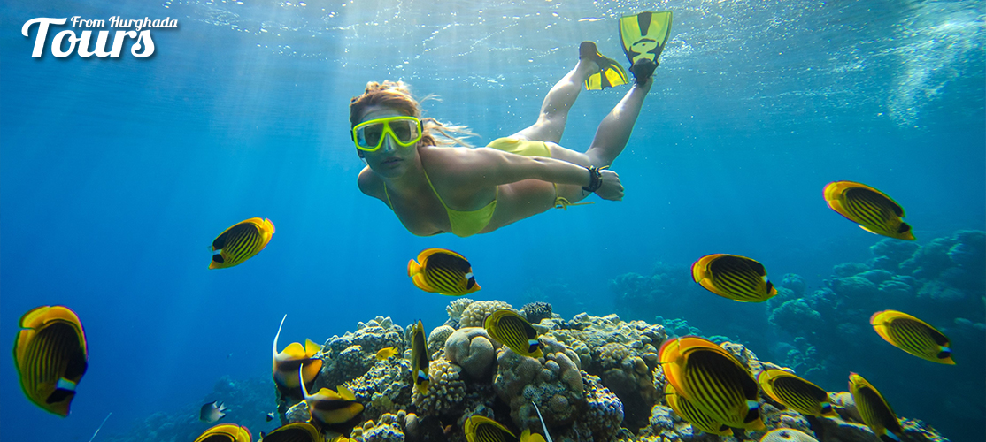 Snorkeling - 8 Days Hurghada and Luxor Holiday