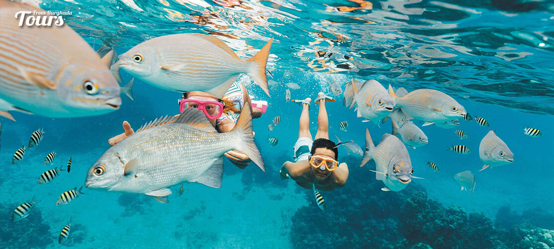 Snorkeling - 9 Days Marsa Alam Holiday with a Tour to Pyramids and Old Cairo - Tours From Hurghada
